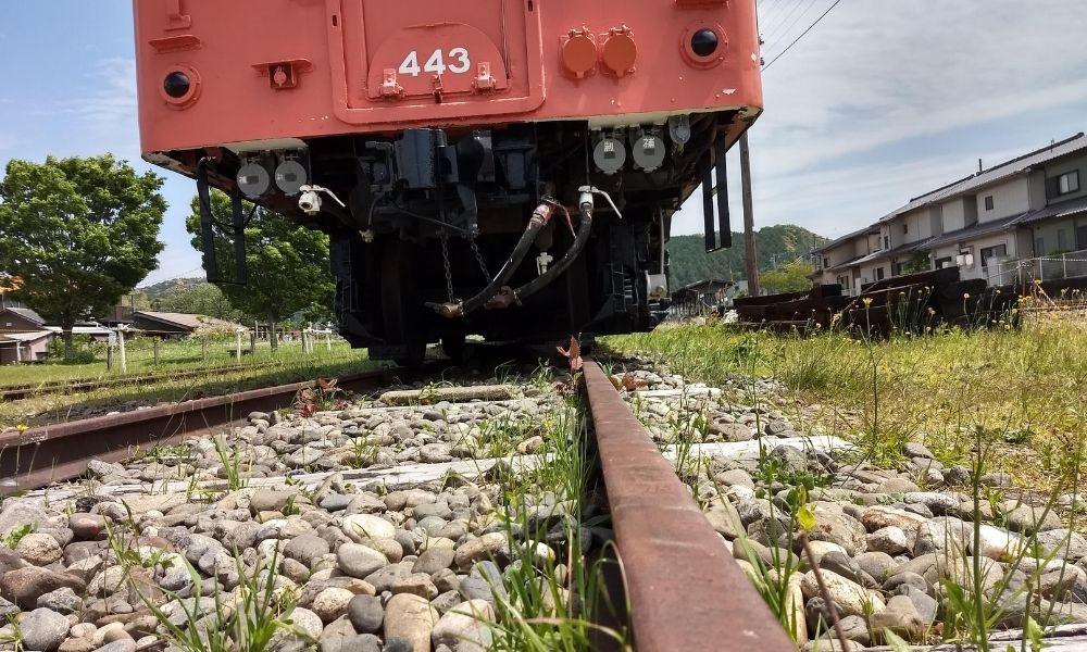 シンエヴァンゲリオン・黒レイが列車下の猫を覗き込んだシーンを再現したアングル